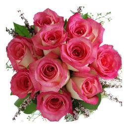 10 Dark Pink Roses Bunch for Siliguri