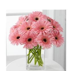 12 lovely pink gerberas In Glass vase for Agra