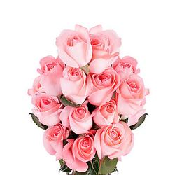 15 Pink Roses Bouquet for Delhi