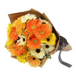 20 Gerberas Bouquet for Delhi