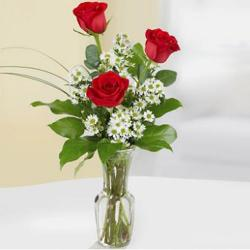 3 red roses in the designer glass vase for Siliguri