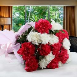Alluring Twenty Mixed Carnations Bouquet for Coimbatore