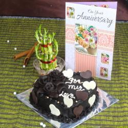 Anniversary Chocolate Cake with Greeting Card and Good Luck Plant for Raipur