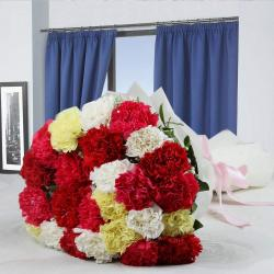 Attractive Mixed Carnations Bouquet