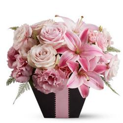 Birthday Gifts for Elderly Women To Noida