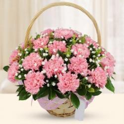 Basket of Pink Carnations for Belgaum