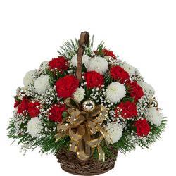Basket Of Red & White Carnations for Kolkata