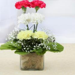Beautiful Carnations Glass Vase for Moradabad