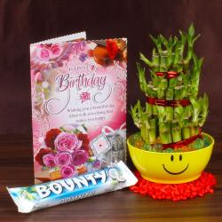 Birthday Greeting Card, Good Luck Plant with Bounty Chocolate for Delhi