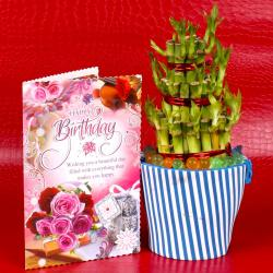 Birthday Greeting Card With Good Luck Plant for Rajahmundry