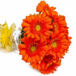 Bouquet of 10 Orange Gerberas Online for North Goa