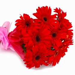 Bouquet of 10 Red Color Gerberas with Tissue Wrapping for Gurgaon