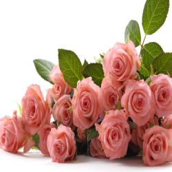 Bouquet of 17 Pink Roses for Alappuzha