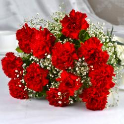 Bouquet of Dozen Red Carnations for Ghaziabad