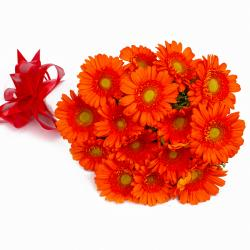 Bouquet of Fresh Fifteen Orange Gerberas Tissue Packed for Imphal