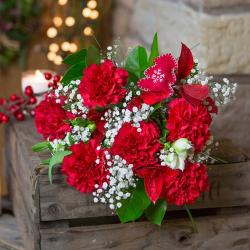 Bouquet of Red Carnations for Moga