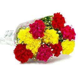 Bouquet of Ten Colorful Carnations for Kapurthala