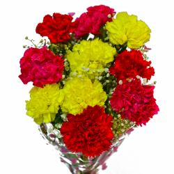 Bouquet of Ten Fresh Carnations for Kapurthala