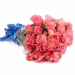 Bunch of 20 Pink Carnations with Cellophane Packing