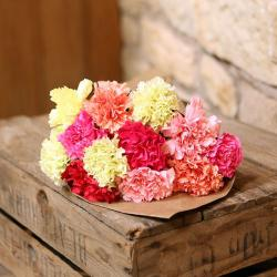 Bunch of Colorful Carnation
