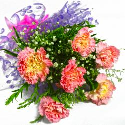 Bunch of Six Pink Carnations for Lucknow