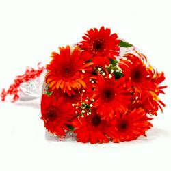 Bunch of Ten Red Gerberas for Ghaziabad