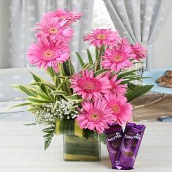 Cadbury Dairy Milk Silk Chocolate with Pink Gerberas in Vase for Dewas