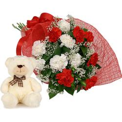 Carnation and Teddy Combo for Moga