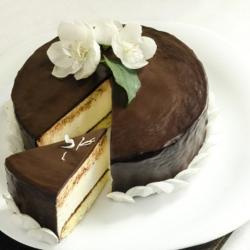 Chocolate Cheese Cake for Jaipur