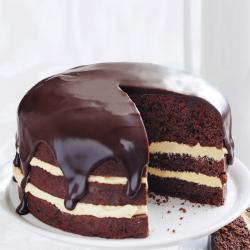 Chocolate Mousse Cake for Delhi