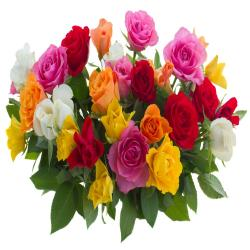 Colored Roses Bouquet for Baroda