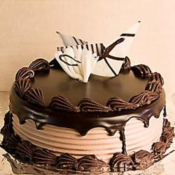 Dark Chocolate Delight Cake for Indore