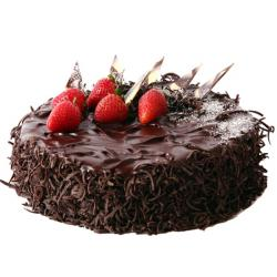 Dark Chocolate Sponge Cake for Cuttack