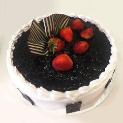 Delicious Blue Berry Cake for Vasco Da Gama