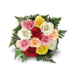 Dozen Color Roses Bouquet for Delhi