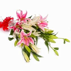 Dozen Mix White and Pink Lilies Hand Bunch