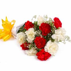 Dozen Red and White Carnations with Tissue Wrapping