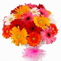Eighteen Colorful Gerberas Bouquet for Agra