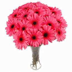 Eighteen Pink Gerberas arranged in Glass Vase for Kakinada