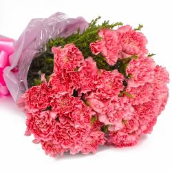 Elegant 25 Pink Carnations Bouquet for Lucknow