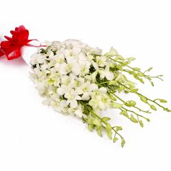 Exotic 10 White Orchids in Tissue Paper Wrapped for Belgaum