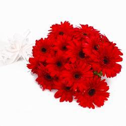 Fantastic Fifteen Red Gerberas Bouquet for Dewas
