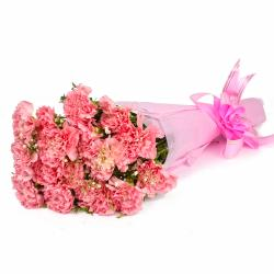 Fifteen Baby Pink Carnations Tissue Packed for Gurgaon