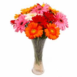 Fifteen Multi Colorful Gerberas Arranged in Glass Vase for Ghaziabad
