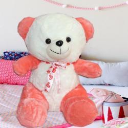 Fluffy and Soft Teddy for Mumbai
