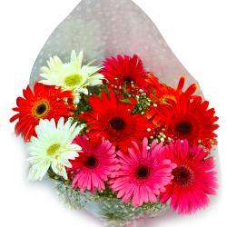 Fresh Mix Gerberas Bouquet for Delhi