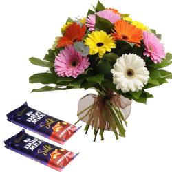 Gerberas and Chocolate Combo for Ahmedabad