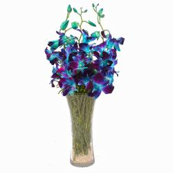 Glass Vase of 6 Stem Blue Orchids for Bangalore