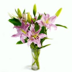 Glass Vase of 6 Stems Lilies for Kolkata