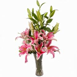 Glass Vase of Five Pink Color Lilies